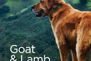 Goatlamb1