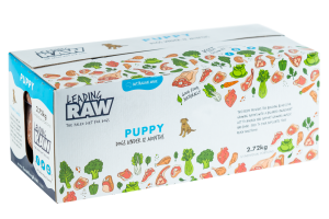 Leading-RAW-Product-Photos-Puppy-Angle-300x200