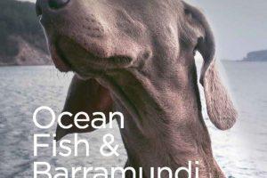 OceanFish1