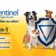 TMS1924_ELANCO_Sentinel_Website_Banner_1200x675_pixels
